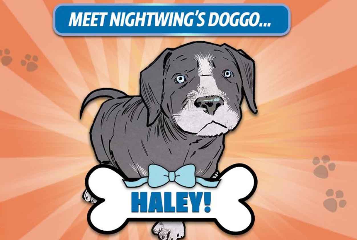 haley-nightwing